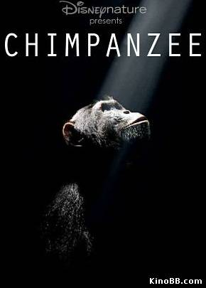 Шимпанзе / DisneyNature: Chimpanzee (2012)